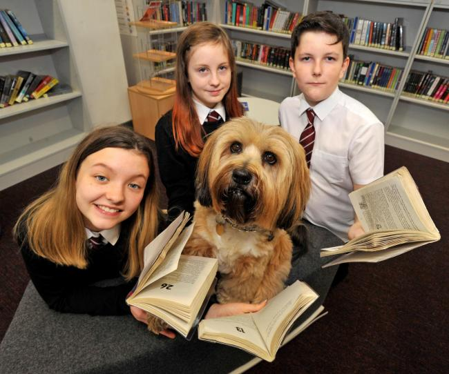 Ayr academy, therapet reading dog Rory with Gracie Wilson, Shannon Detzler and Ryan Findlay.