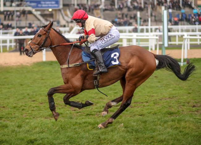 Mcgowans Pass can go close in the Craigie Cup at Ayr on Saturday