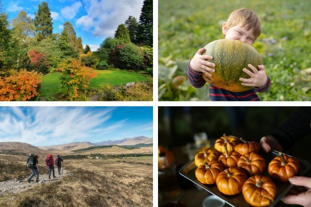Cluny House Gardens in Perthshire; pumpkin picking at Kilduff Farm; West Highland Way. Pictures: Kilduff Farm/VisitScotland/Kenny Lam