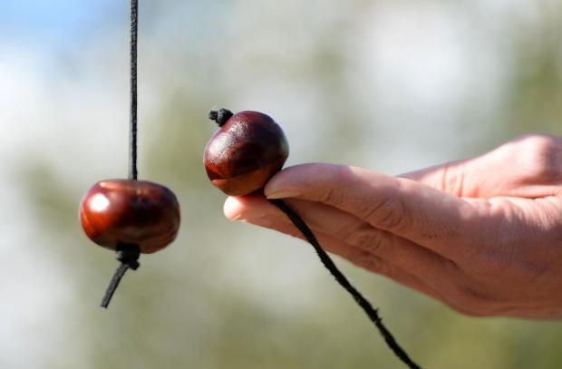 Ayr Advertiser: Playing conkers. Picture: Joe Giddens/PA Wire
