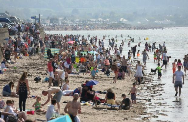 Ayr Advertiser: A packed Ayr beach enjoying the sun before the pandemic