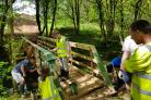 Replacement of unsafe bridge in Tarbolton Woods almost done