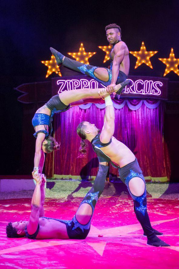 Circus show coming to Ayr